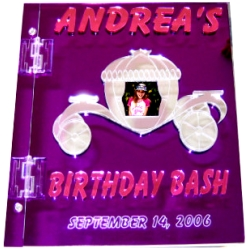 Birthday Bash Sign In Book